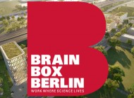 06_brainbox_comingsoon.jpg
